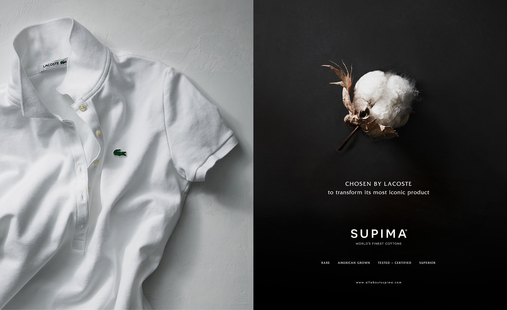 NEW WORK - Supima Cotton